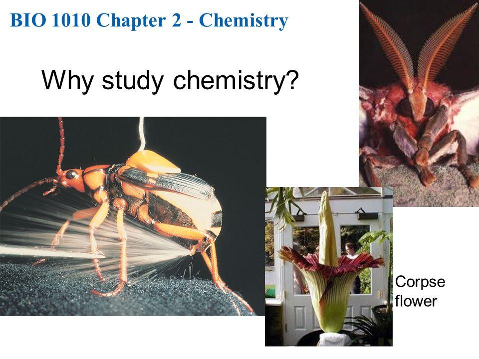 BIO 1010 Chapter 2 - Chemistry