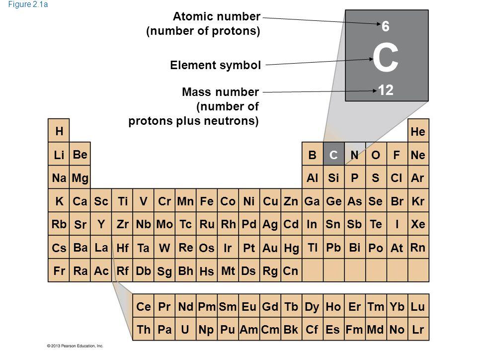 C 6 12 Atomic number (number of protons) Element symbol Mass number