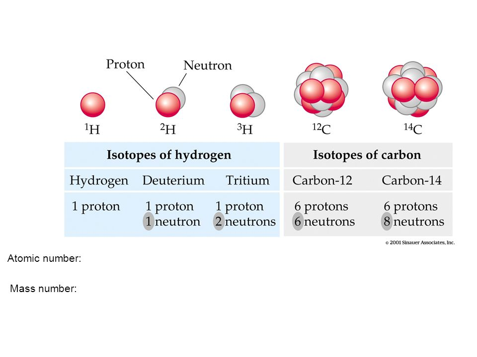 Another example of isotopes