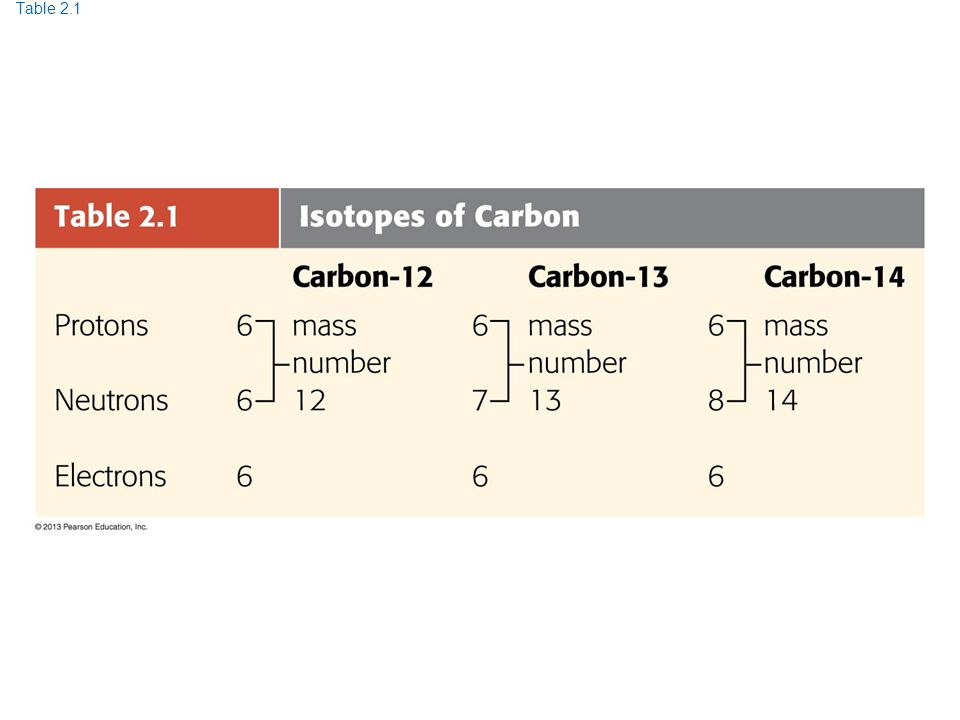 Table 2.1 Table 2.1 Isotopes of Carbon 30