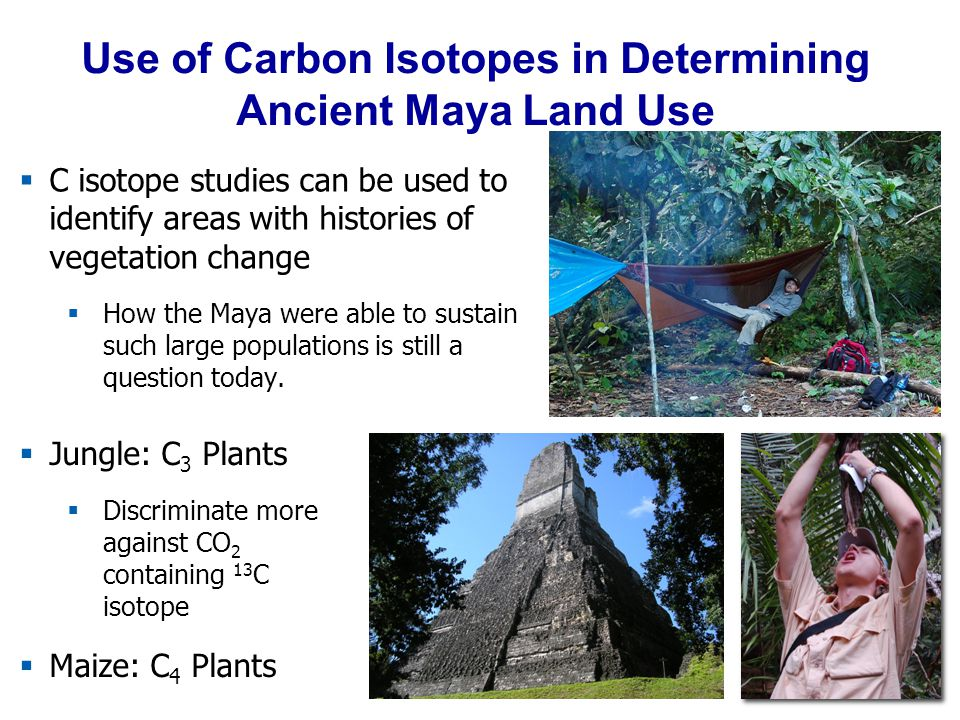 Use of Carbon Isotopes in Determining Ancient Maya Land Use