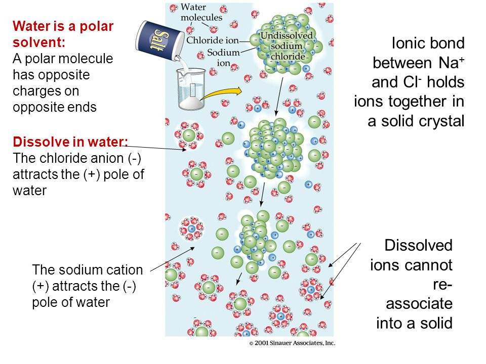 Ionic bond between Na+ and Cl- holds ions together in a solid crystal