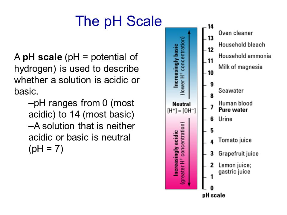 The pH Scale A pH scale (pH = potential of hydrogen) is used to describe whether a solution is acidic or basic.