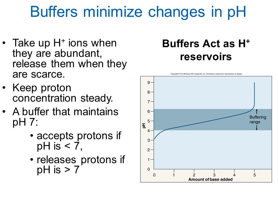 Buffers Act as H+ reservoirs