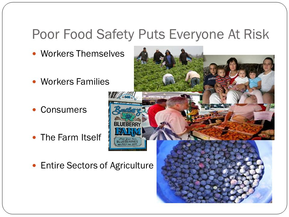 Poor Food Safety Puts Everyone At Risk