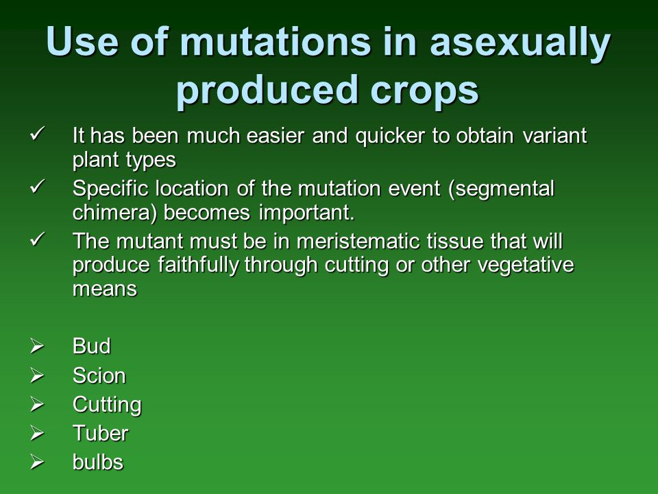 Use of mutations in asexually produced crops