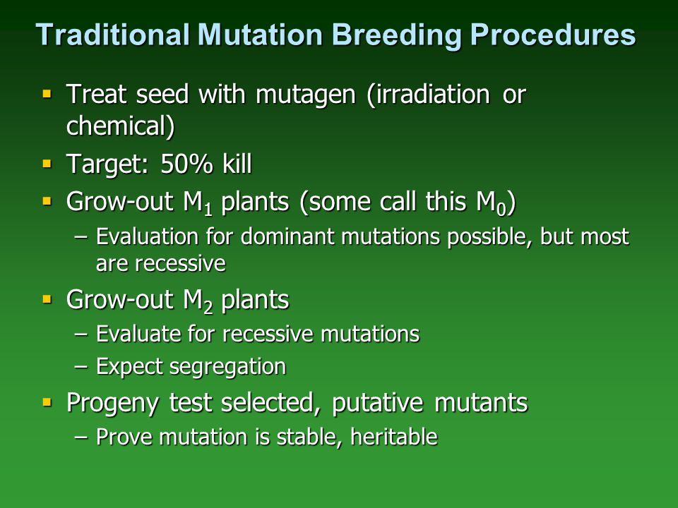 Traditional Mutation Breeding Procedures