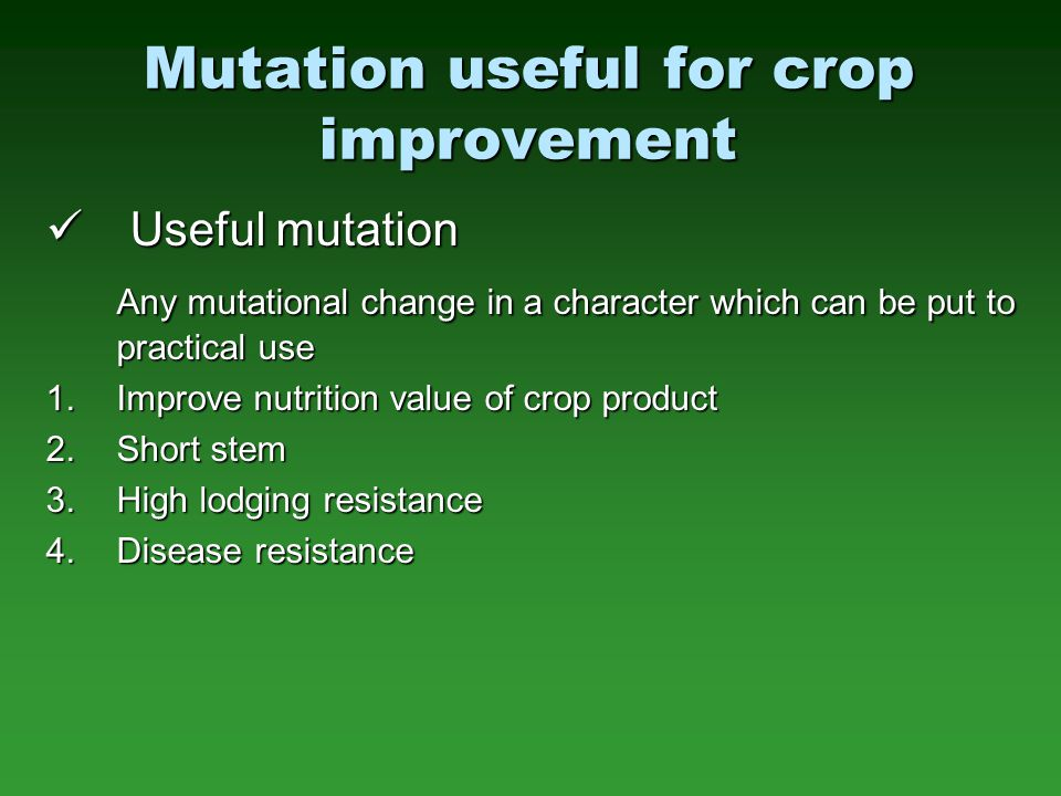 Mutation useful for crop improvement