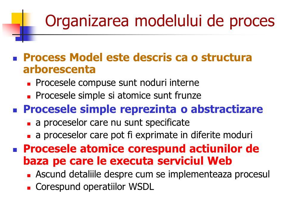 Organizarea modelului de proces