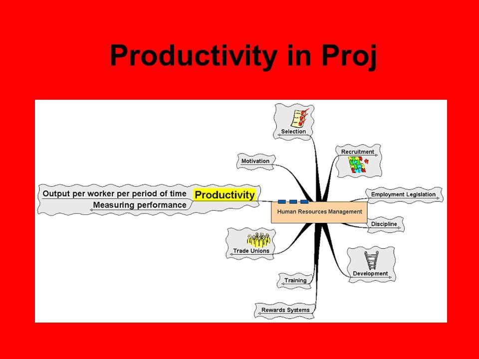 Productivity in Proj