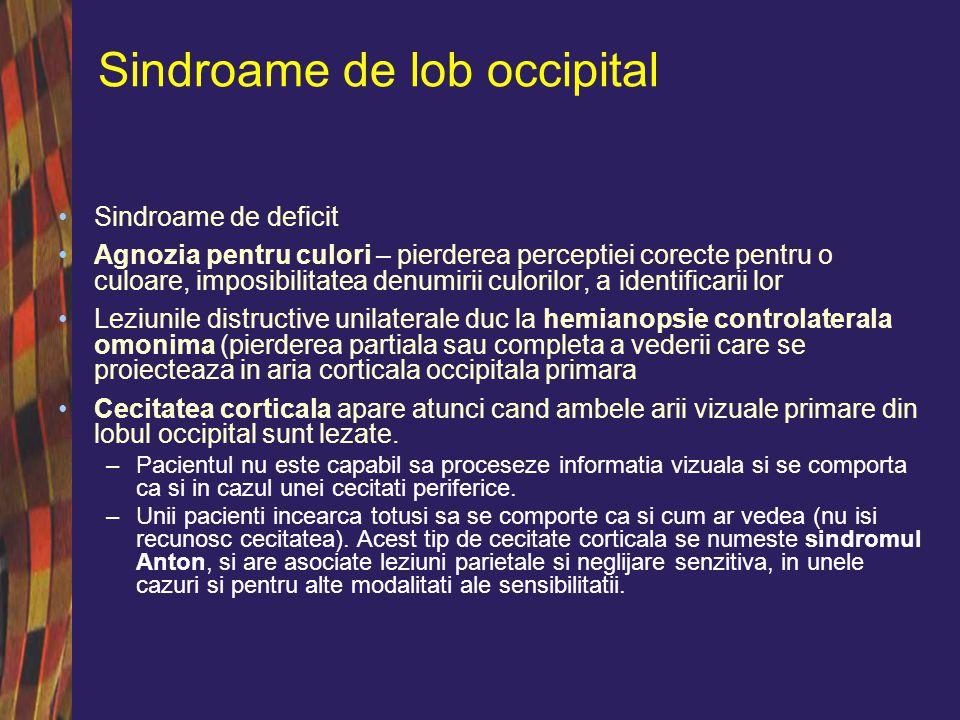 Sindroame de lob occipital