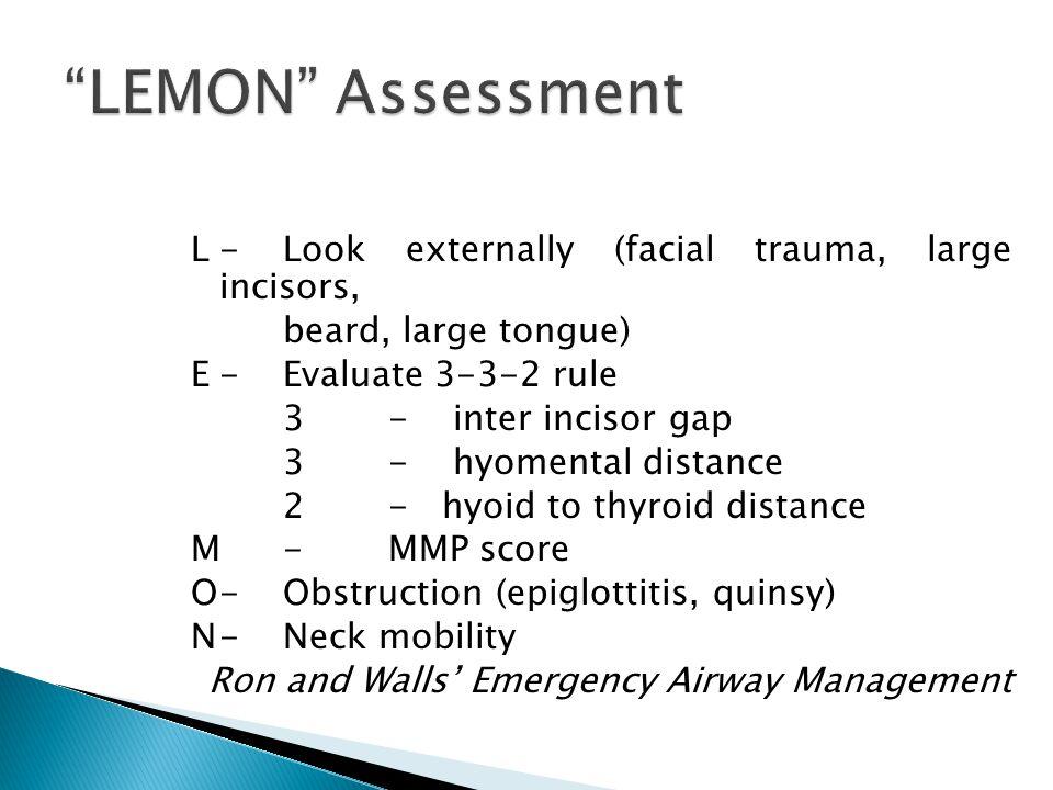 LEMON Assessment