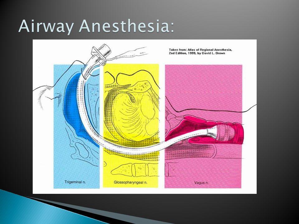 Airway Anesthesia: