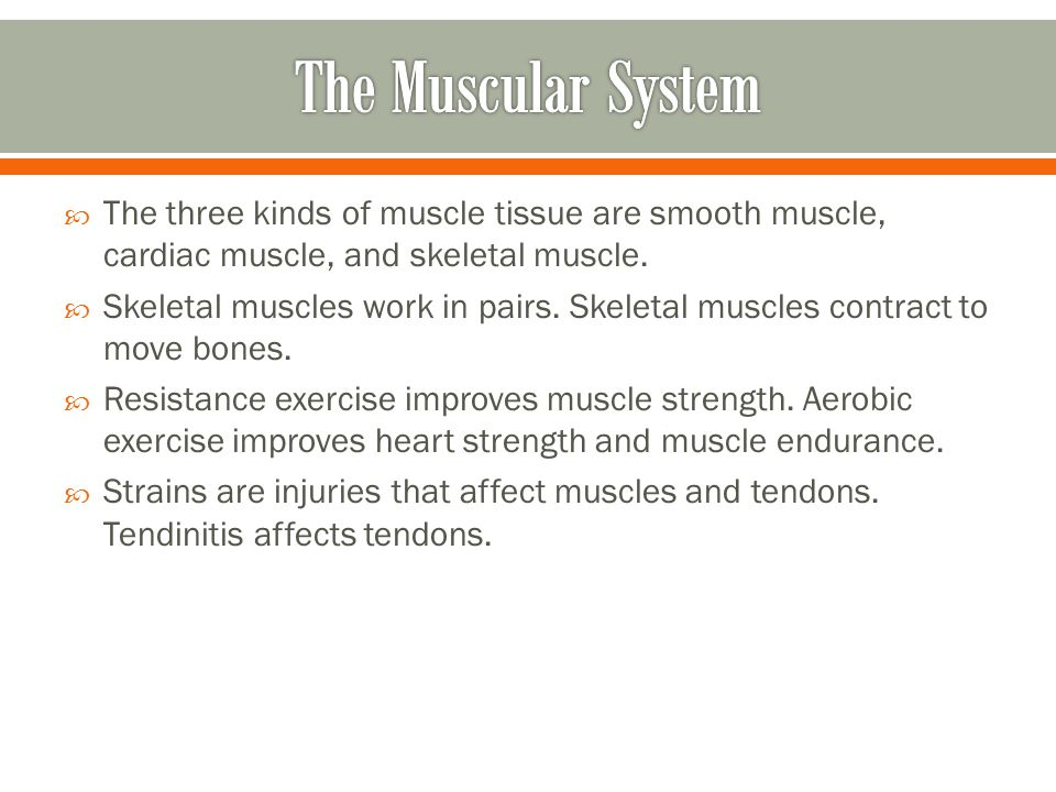 The Muscular System The three kinds of muscle tissue are smooth muscle, cardiac muscle, and skeletal muscle.