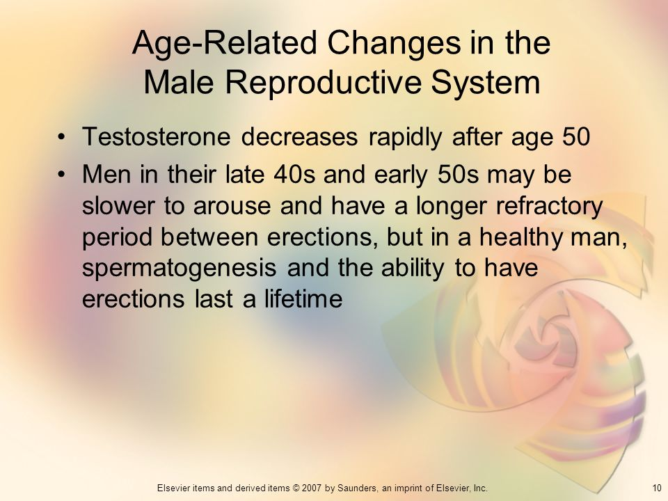 Age-Related Changes in the Male Reproductive System
