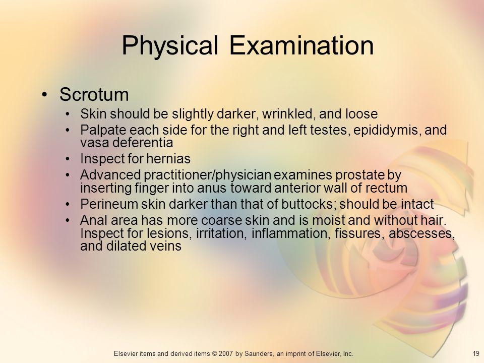 Physical Examination Scrotum