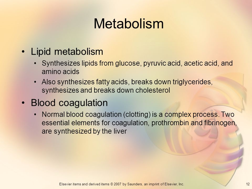 Metabolism Lipid metabolism Blood coagulation