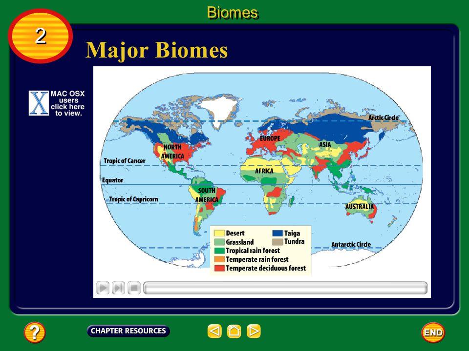 Biomes 2 Major Biomes