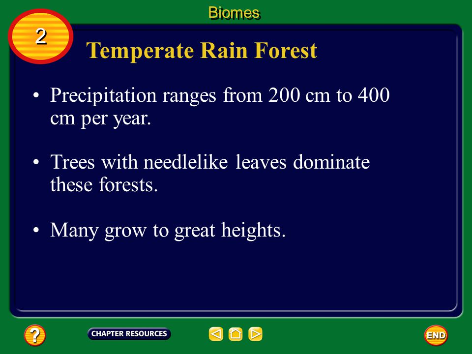 Biomes 2. Temperate Rain Forest. Precipitation ranges from 200 cm to 400 cm per year. Trees with needlelike leaves dominate these forests.