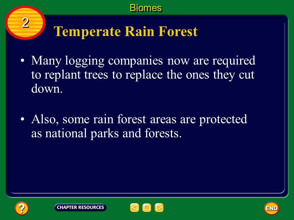 Biomes 2. Temperate Rain Forest. Many logging companies now are required to replant trees to replace the ones they cut down.