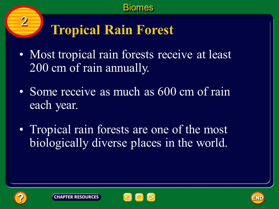 Biomes 2. Tropical Rain Forest. Most tropical rain forests receive at least 200 cm of rain annually.