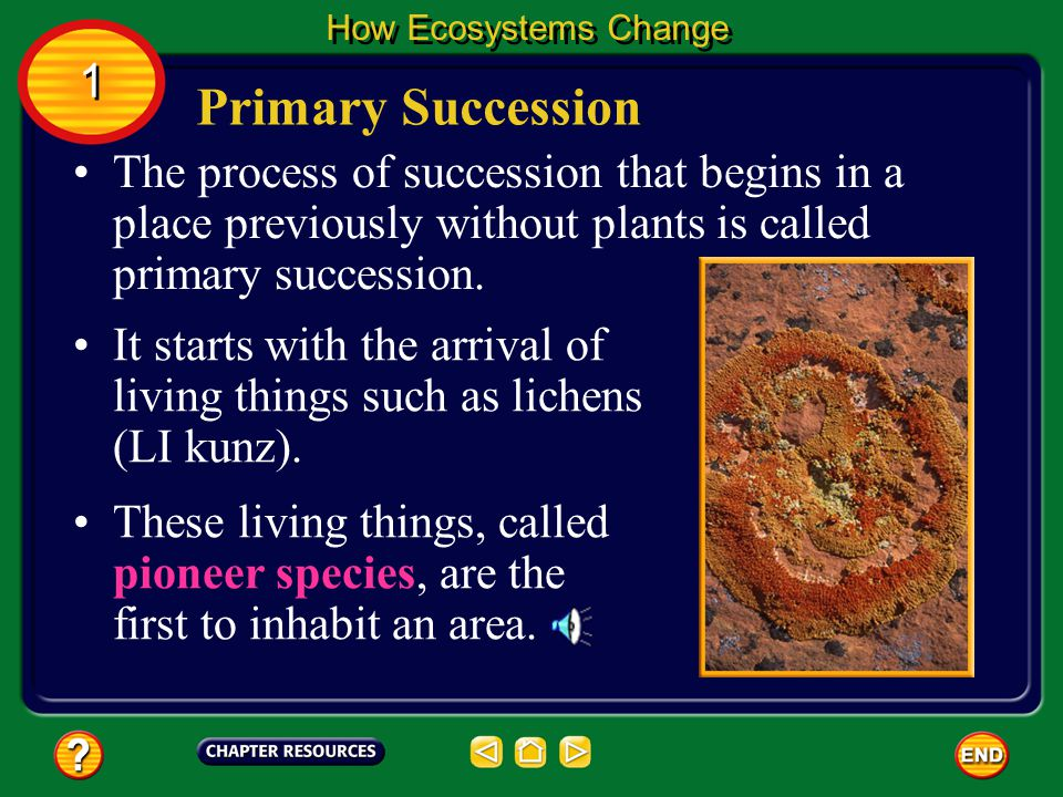 How Ecosystems Change 1. Primary Succession.