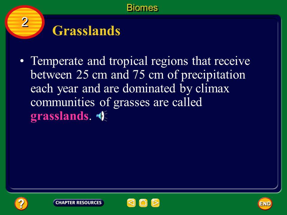 Biomes 2. Grasslands.
