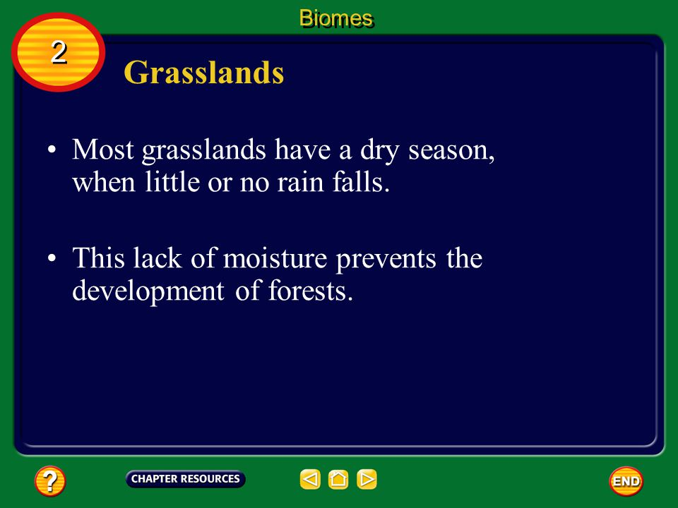 Biomes 2. Grasslands. Most grasslands have a dry season, when little or no rain falls.