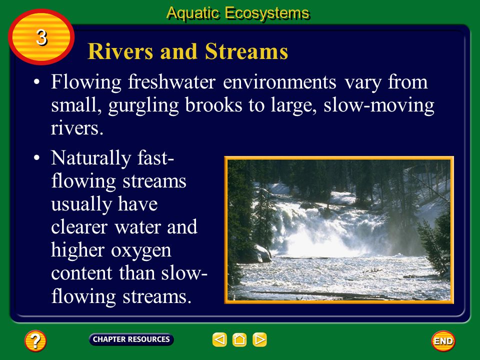 Aquatic Ecosystems 3. Rivers and Streams. Flowing freshwater environments vary from small, gurgling brooks to large, slow-moving rivers.