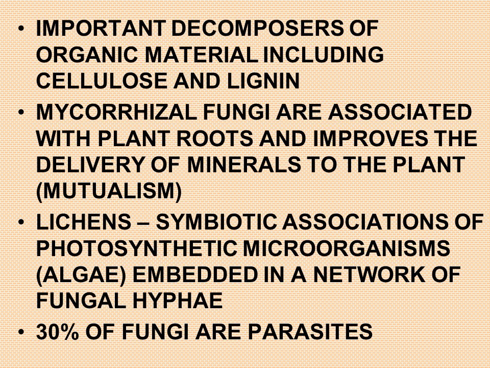 IMPORTANT DECOMPOSERS OF ORGANIC MATERIAL INCLUDING CELLULOSE AND LIGNIN