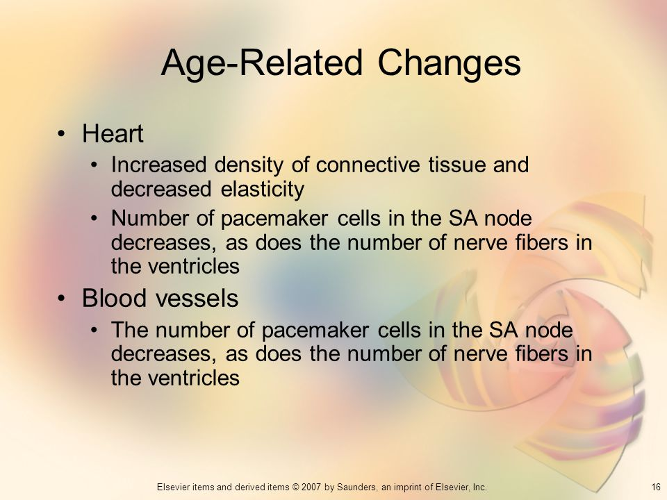 Age-Related Changes Heart Blood vessels