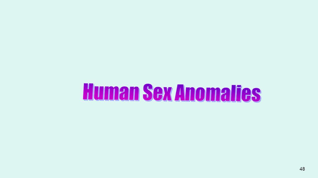 Human Sex Anomalies