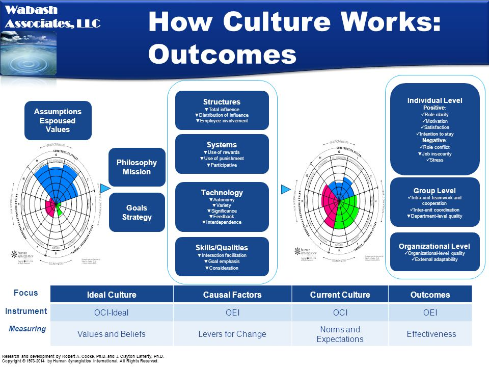 How Culture Works: Outcomes