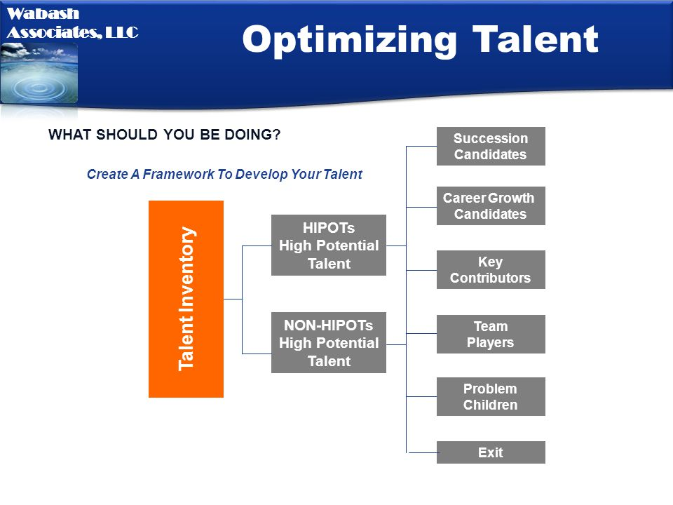 Optimizing Talent Talent Inventory WHAT SHOULD YOU BE DOING HIPOTs