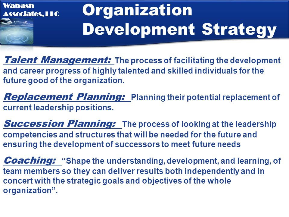 Organization Development Strategy