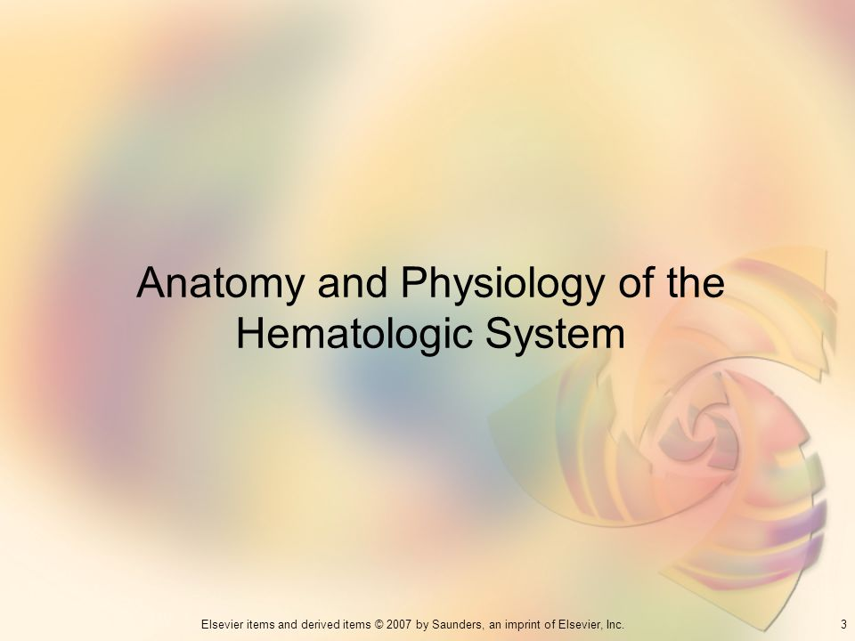 Anatomy and Physiology of the Hematologic System