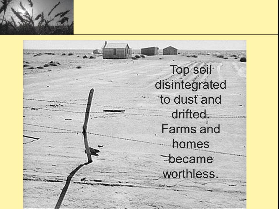 Top soil disintegrated to dust and drifted