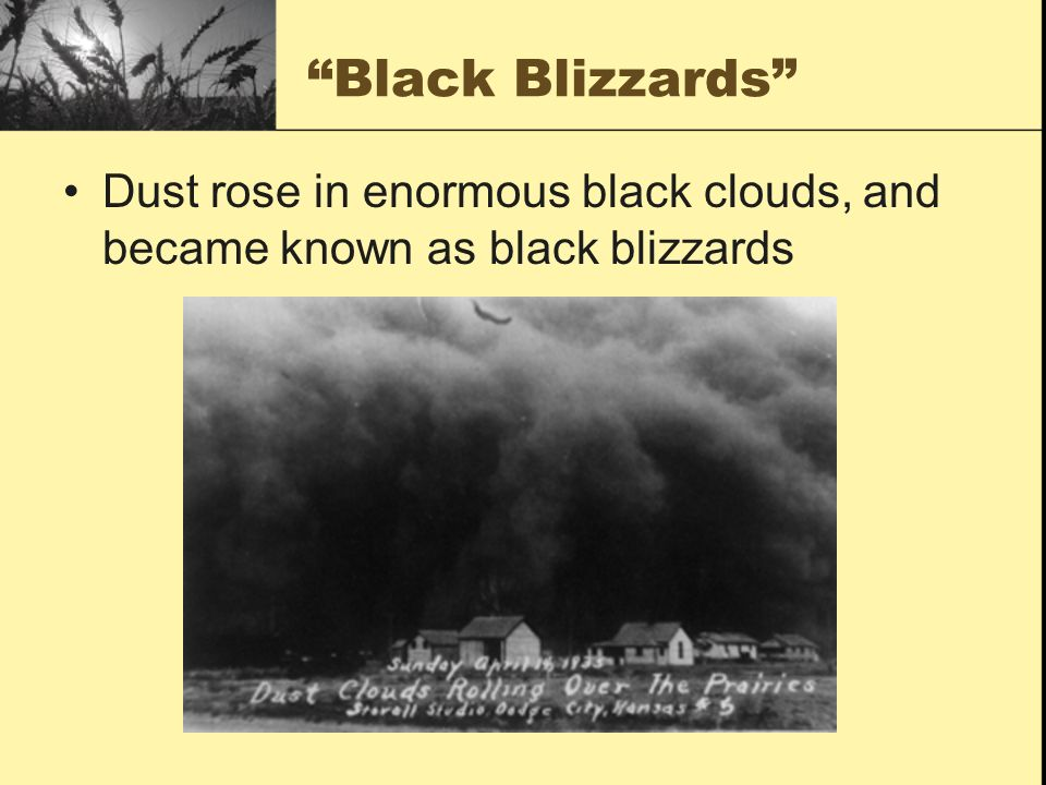 Black Blizzards Dust rose in enormous black clouds, and became known as black blizzards
