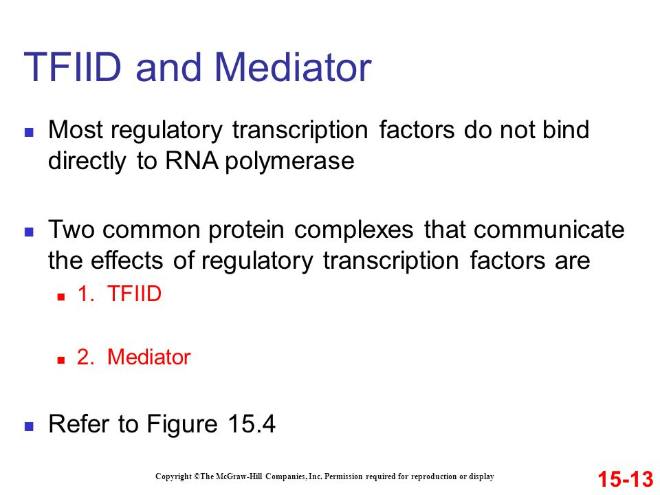 TFIID and Mediator Most regulatory transcription factors do not bind directly to RNA polymerase.