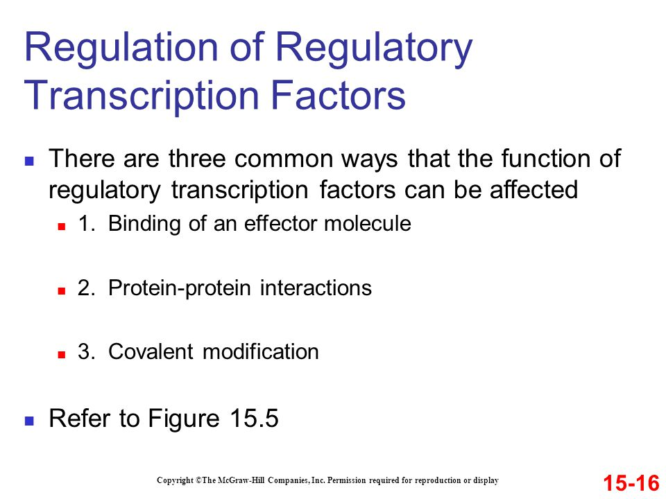 Regulation of Regulatory Transcription Factors