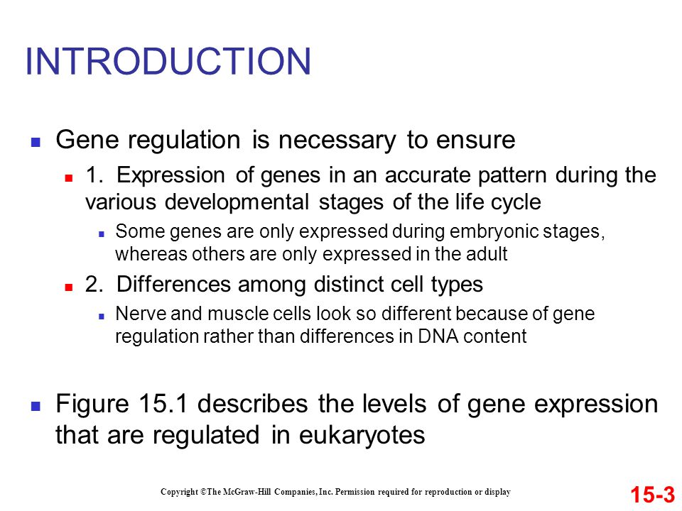 INTRODUCTION Gene regulation is necessary to ensure