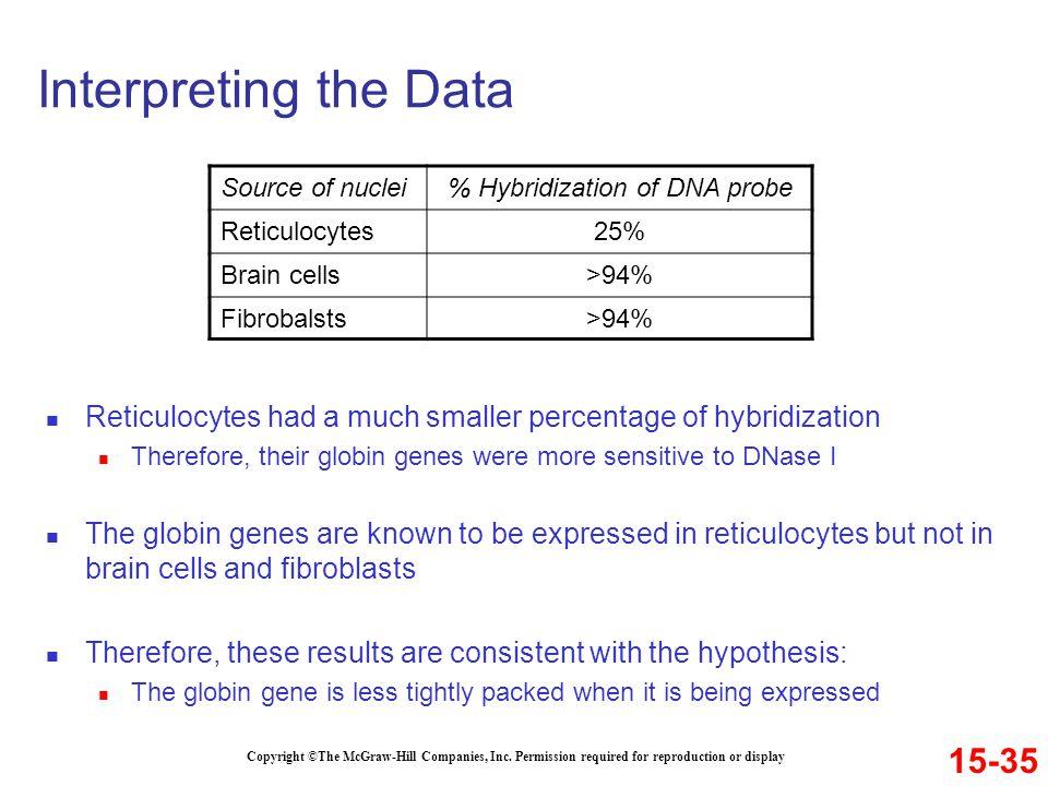 % Hybridization of DNA probe