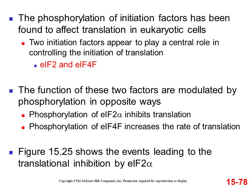 The phosphorylation of initiation factors has been found to affect translation in eukaryotic cells