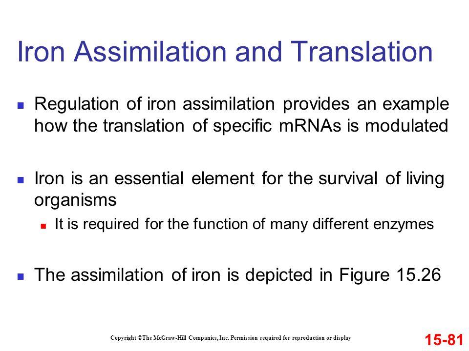 Iron Assimilation and Translation
