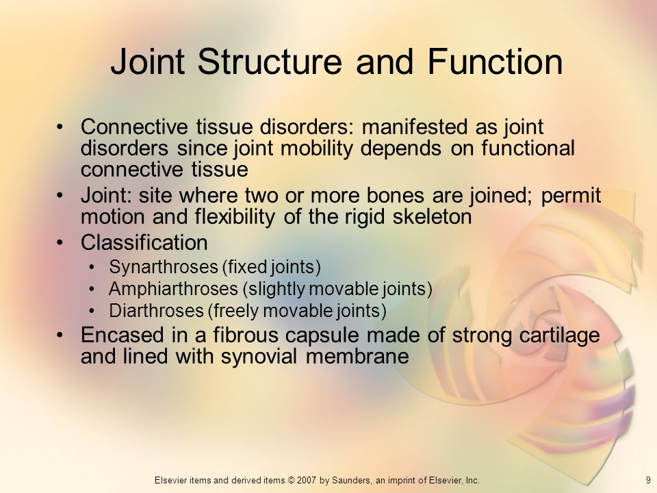 Joint Structure and Function