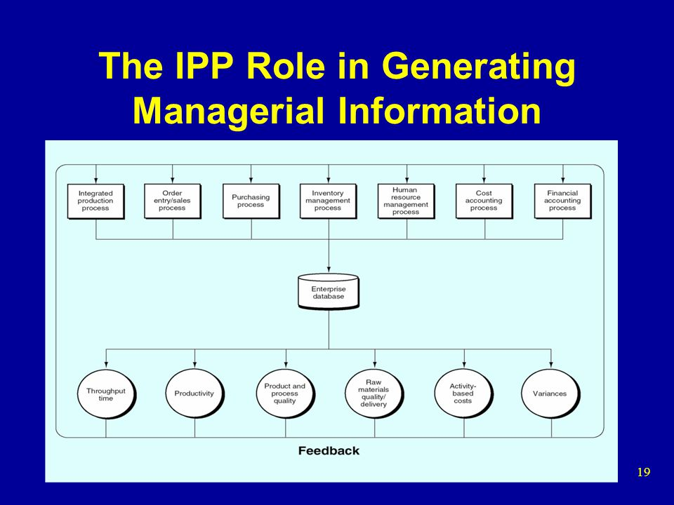 The IPP Role in Generating Managerial Information
