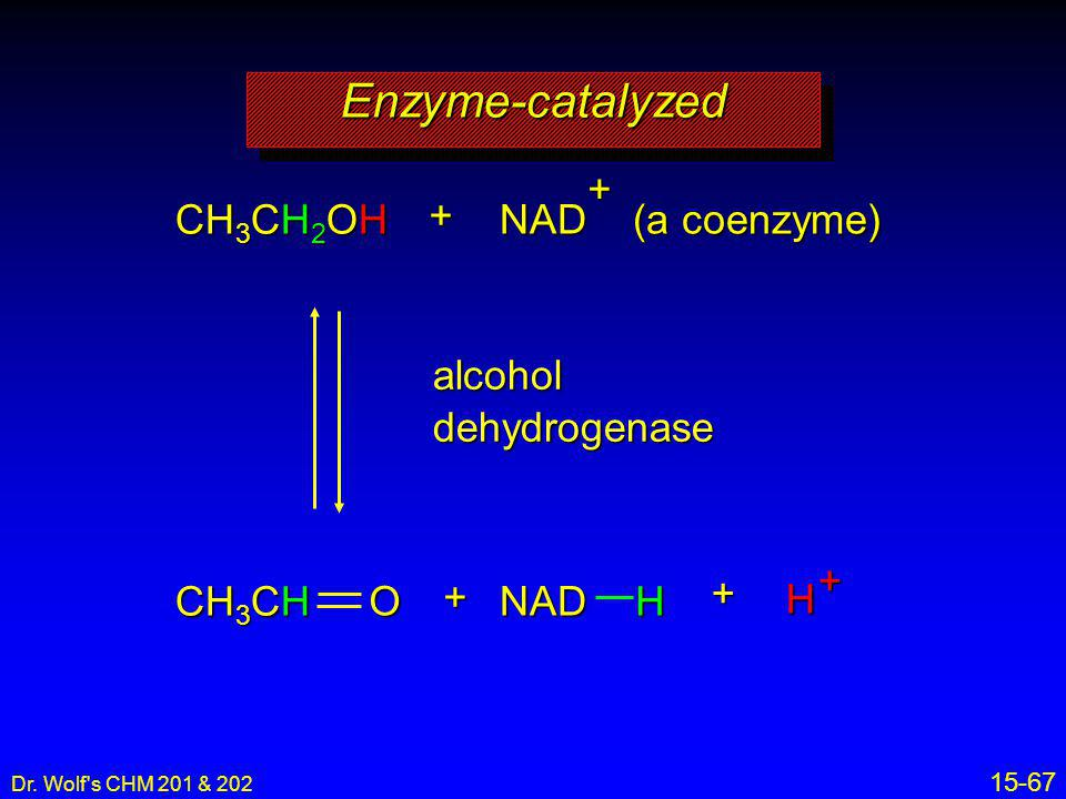 Enzyme-catalyzed NAD (a coenzyme) + CH3CH2OH + alcohol dehydrogenase +