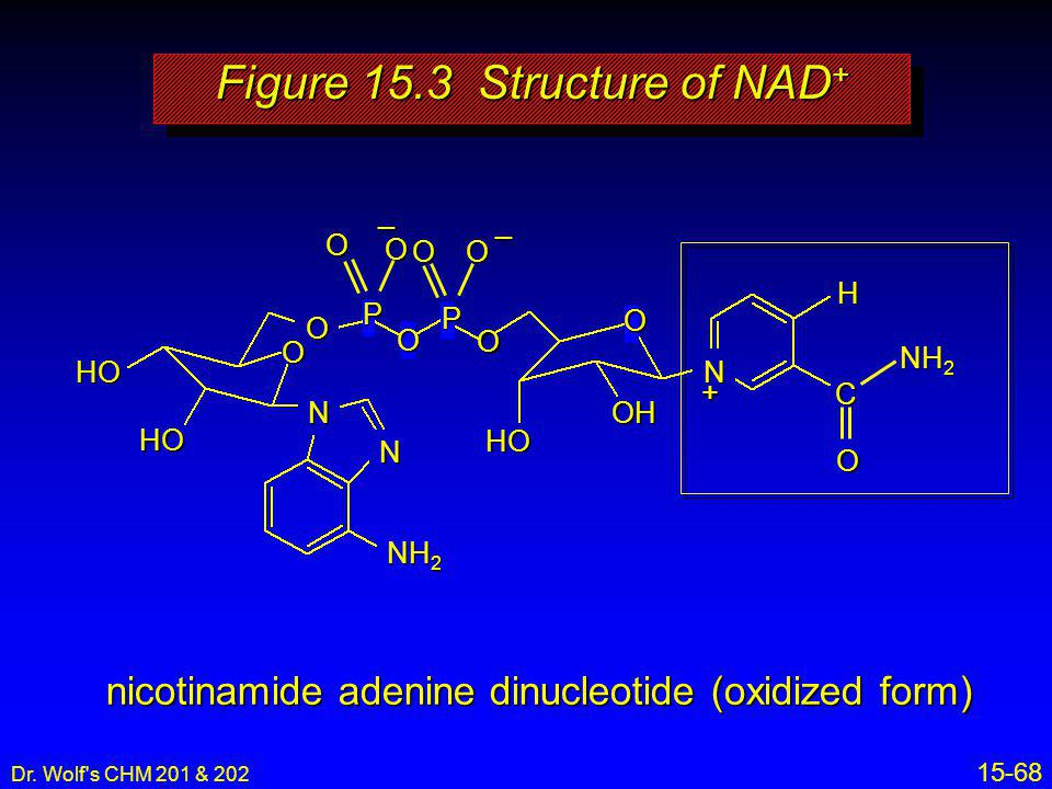 Figure 15.3 Structure of NAD+