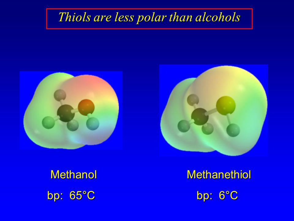 Thiols are less polar than alcohols