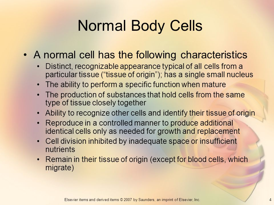 Normal Body Cells A normal cell has the following characteristics